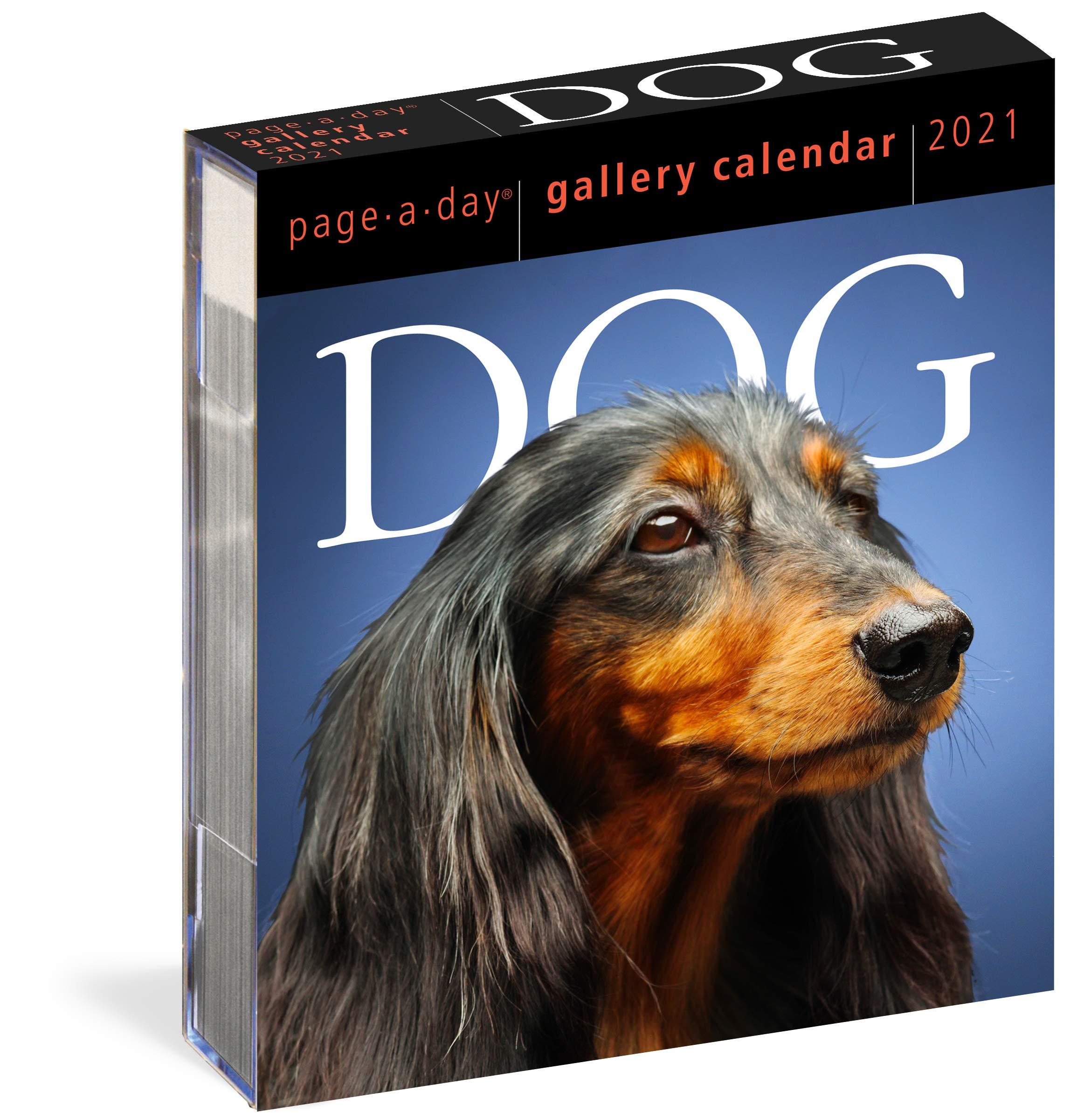 Dog Calendar 2021 Amazon.com: Dog Page A Day Gallery Calendar 2021 (9781523508976