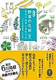 野草の名前 夏 和名の由来と見分け方 (ヤマケイ文庫)