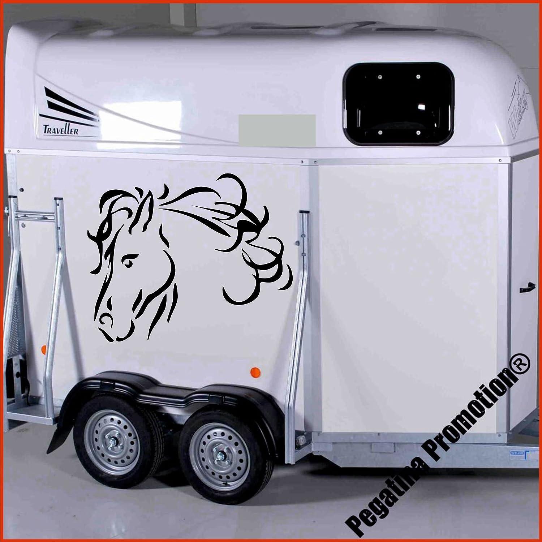 Pferdekopf Modell 6 Aufkleber Anhänger Pferd Anhänger ca. 60cm Pegatina Promotion ®