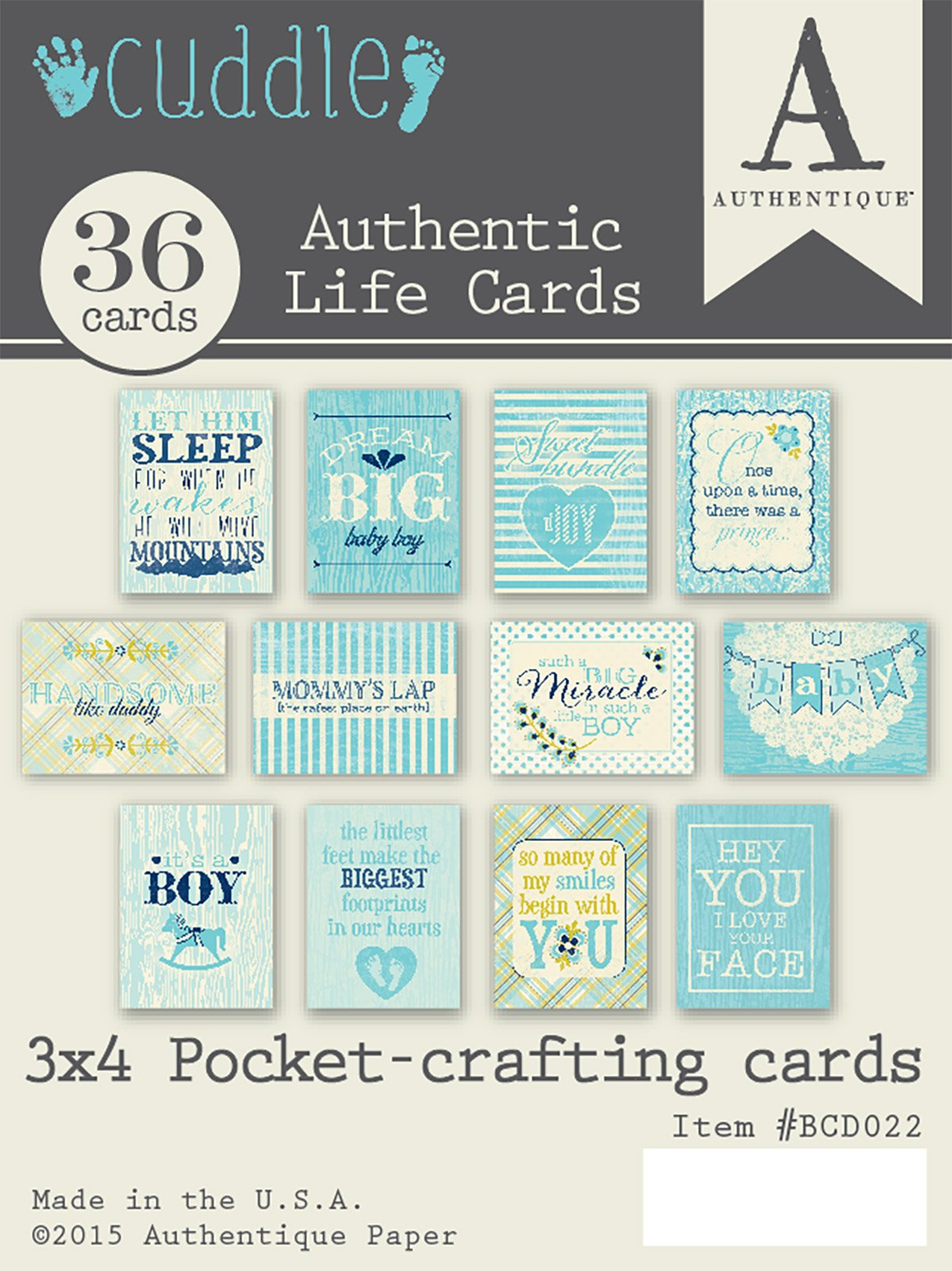 Authentique Paper BCD022 Cuddle Boy Authentic Life Pocket Crafting & Journaling Cards, 3'' x 4'', Multicolor