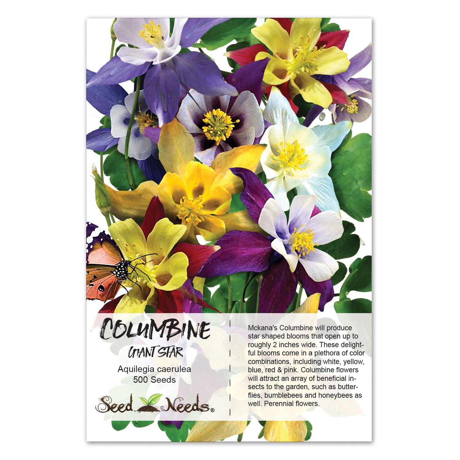Amazon 100 Flower Seeds Columbine Giant Star Mix Aquilegia