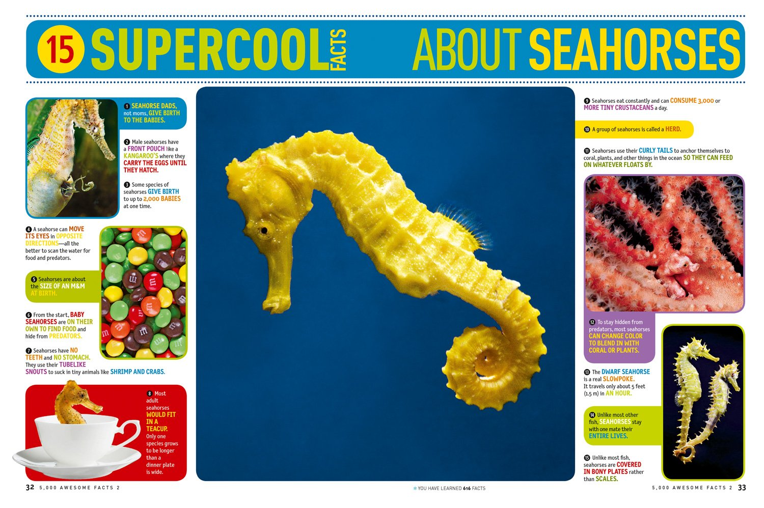 5,000 Awesome Facts (About Everything!) 2 (National Geographic Kids) by National Geographic Books (Image #5)