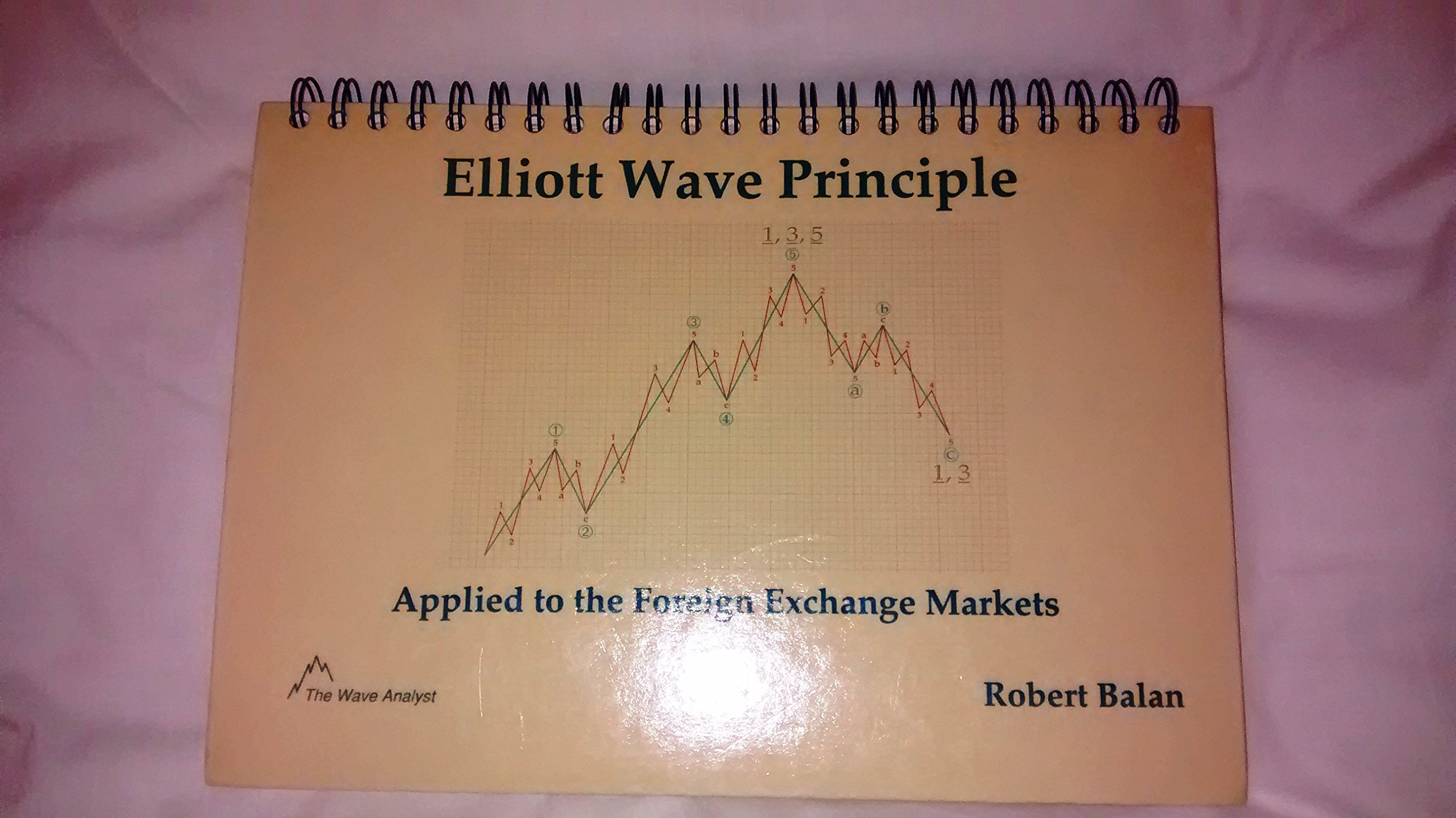 Elliott wave principle applied to the foreign exchange