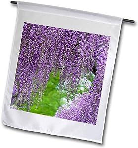 3dRose Danita Delimont - Gardens - Japanese Wisteria. - 12 x 18 inch Garden Flag (fl_314999_1)