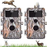 BlazeVideo 16MP 1080P NO-Glow Wild- und Naturbeobachtungskamera für Jagd