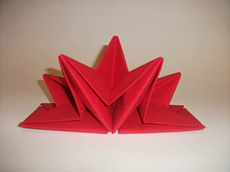 Servietten falten: Weihnachten - Ideen zum Tischdeko basteln ... | 338x450
