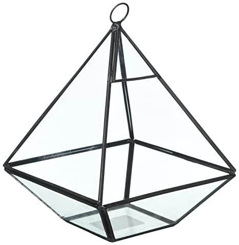 Amazon Com Hanging Clear Glass Prism Air Plant Terrarium Tabletop
