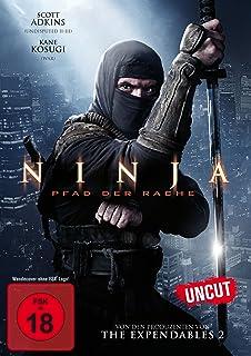 Ninja II : Shadow of a Tear [Francia] [DVD]: Amazon.es ...