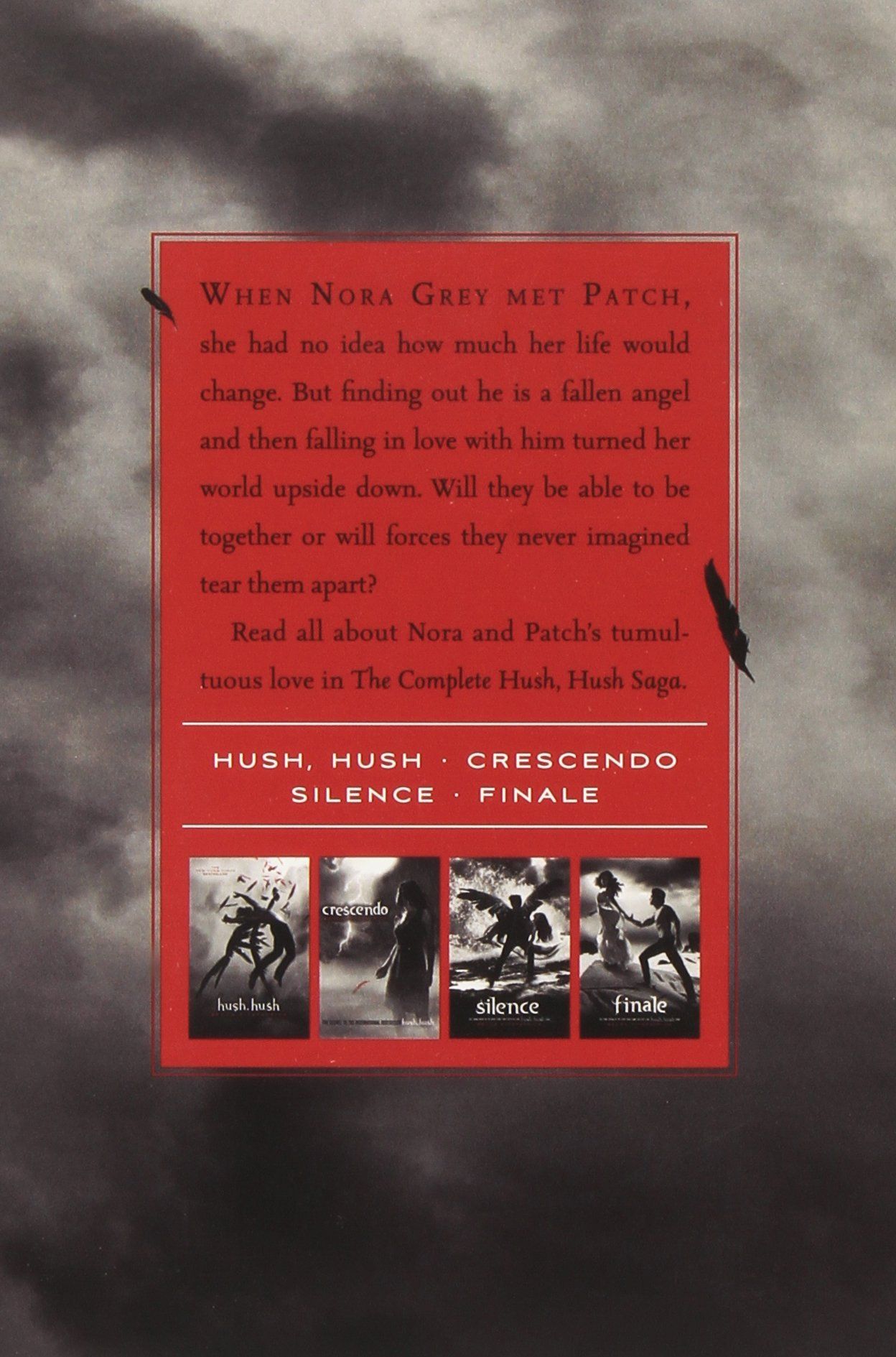 Hush Hush Silence Ebook