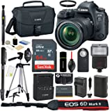 Canon EOS 6D Mark II DSLR Camera with 24-105mm f/3.5-5.6 IS STM Lens + Case + SanDisk 64GB Card + Reader + Flash + Tripod + Monopod + Grip + Spare Battery and Charger + Deluxe Accessories Bundle
