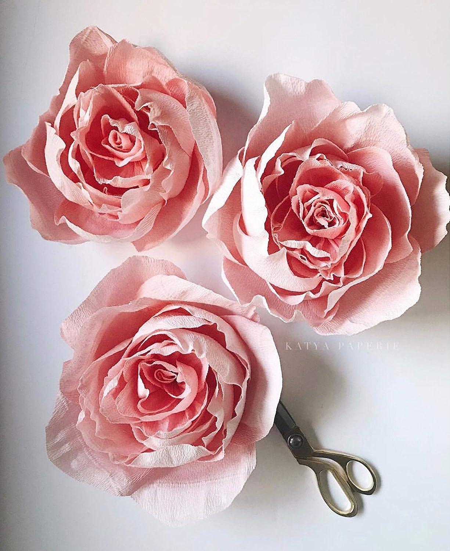 Amazon Com Paper Peony Decorations Set Of 3 Flowers Girl Baby