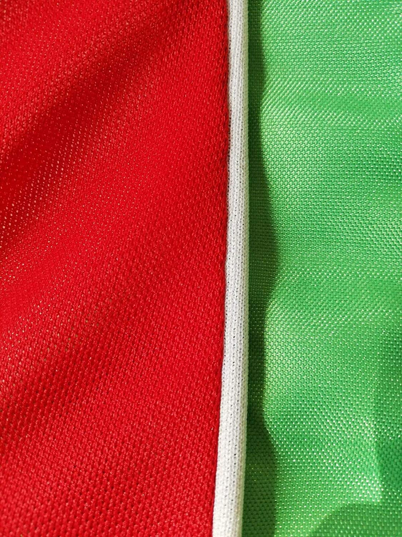 SJS CARSTYLING Hardtopcover Staubschutzh/ülle Schutzcover Italienflagge Italy passend f/ür FIAT 124 Spider