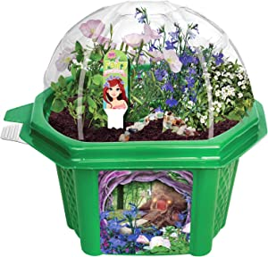 Grow Your Own Mini Fairy Wonderland - Enjoy Sweet Scented Flowers That Attract Fairies - Includes Everything Needed to Create Your Magical Garden
