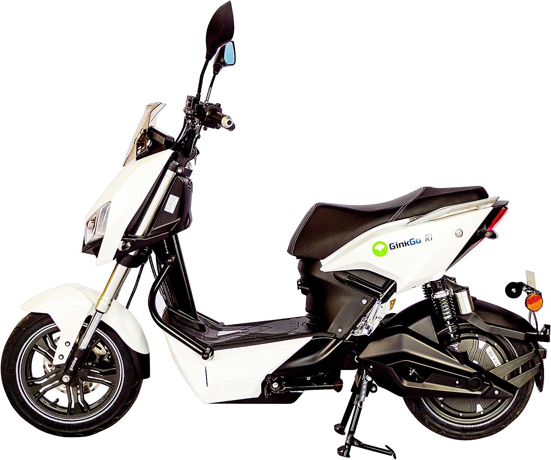 Ginkgo R1 Elektroroller Mit Straßenzulassung Zweisitzer 45 Km H Bis Zu 120 Km Herausnehmbarer Lithium Ionen Akku Weiß Auto