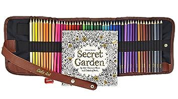 Amazon.com: Professional Color Pencil Set-48 Unique Art Coloring ...