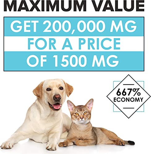 Hemp Oil for Dogs and Cats – Premium Dog Hemp Oil Drops 200,000 Made in USA – Dog Calming Aid for Stress Anxiety Relief – Pet Relief Rich in Omega 3-6-9 – Hip Joint Health Inflammation Relief