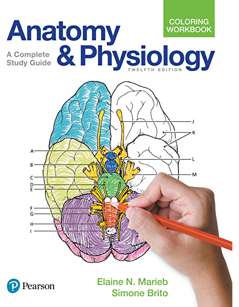 - Anatomy And Physiology Coloring Workbook (2-downloads) 12, N, Marieb  Elaine, Brito Simone - Amazon.com