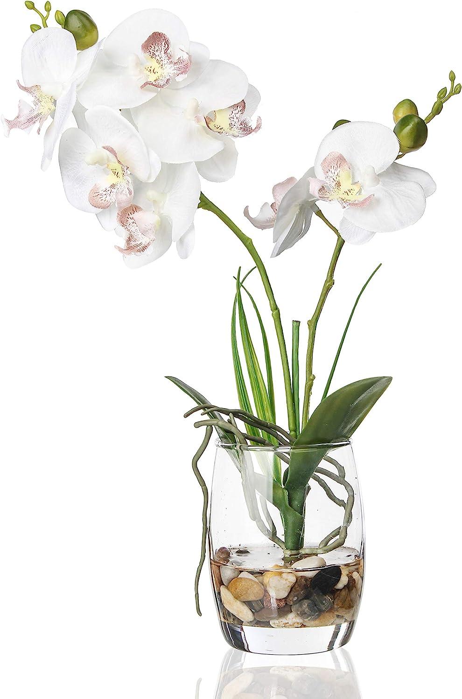 Jusdreen Artificial Flower Bonsai with Glass Vase Vivid Orchid Flowers Arrangement Phalaenopsis Flowers Pot for Home Office Décor House Decorations(Glass Vase/White Orchid)