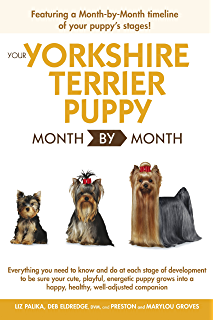 Yorkshire Terrier Training Breed Specific Puppy Training Techniques