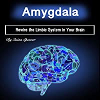 Amygdala: Rewire the Limbic System in Your Brain