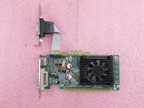 EVGA 512-P3-1300-LR NVIDIA GeForce 8400 GS 512MB Low Profile PCIe x16 Video Card