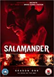 Salamander: The Complete Season One [DVD] [2012]