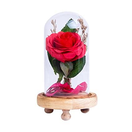 amazon com romantic gift red silk rose with fallen petals for