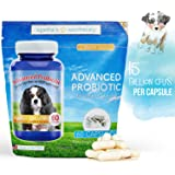 Advanced Probiotic 2 Month Supply - 15 billion/CFU 10 Strains for Dog Health-Voted Best Dog Probiotic 2017 Helps Digestion, IBS, Allergies, Dental Issues, Yeast, & Diarrhea