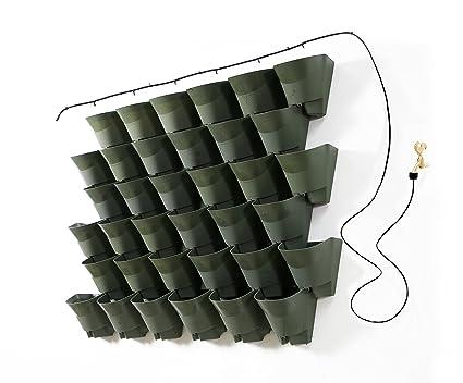 Amazon.com: Worth Garden Olive Green Self-Watering 1 Set - 3 Pockets on modern planters wholesale, plastic planters wholesale, cast iron planters wholesale, urn planters wholesale, lead planters wholesale, aluminum planters wholesale, silver planters wholesale,