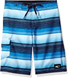 O'Neill Boys' Santa Cruz Stripe Boardshort