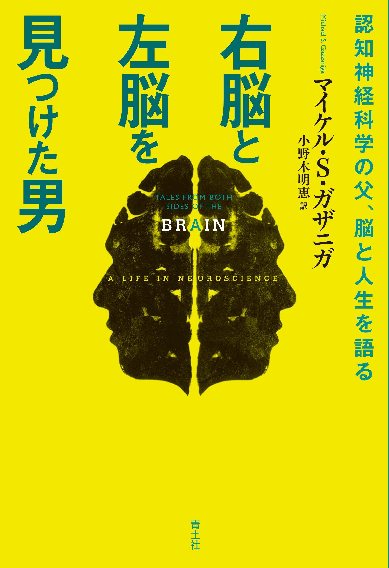 役割 右脳 左脳 右脳派の性格の特徴5選!左脳派との違いや天才な人間のタイプに役割も