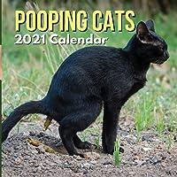 Pooping Cats Calendar 2021: Funny Animal Gag Joke Presents for Men Kids Women Birthday Christmas Stocking Stuffers…