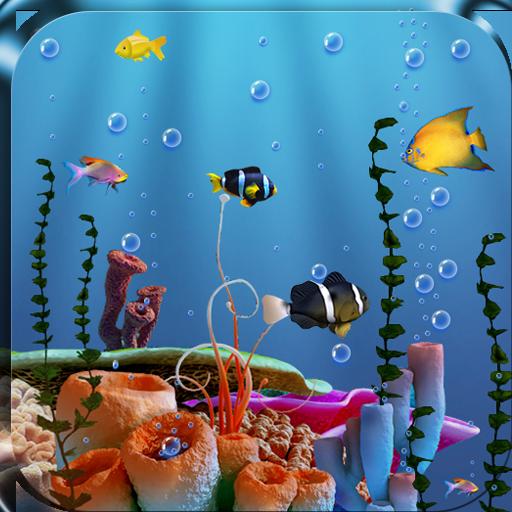 live-fish-feed-wallpaper