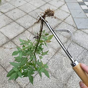 Herramientas de deshierba manual Herramienta de eliminaci/ón de dientes de le/ón Extractor de malas hierbas Excavadora para jard/ín al aire libre Plantar flores para eliminar malas hierbas?