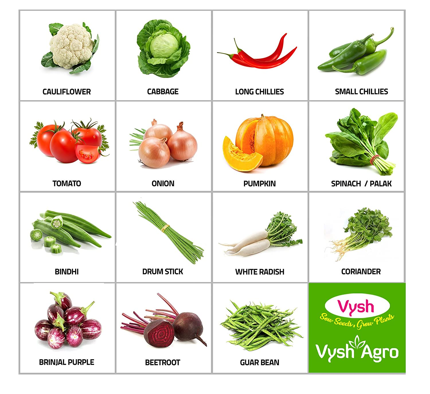 Terrace garden details - Vysh Agro 15 Varieties Of Organic Vegetable Seeds For Terrace And Kitchen Garden 500 Seeds