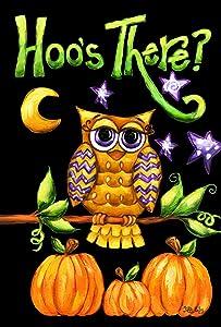 Toland Home Garden Hoo's There 12.5 x 18 Inch Decorative Fall Autumn Owl Bird Pumpkin Halloween Garden Flag