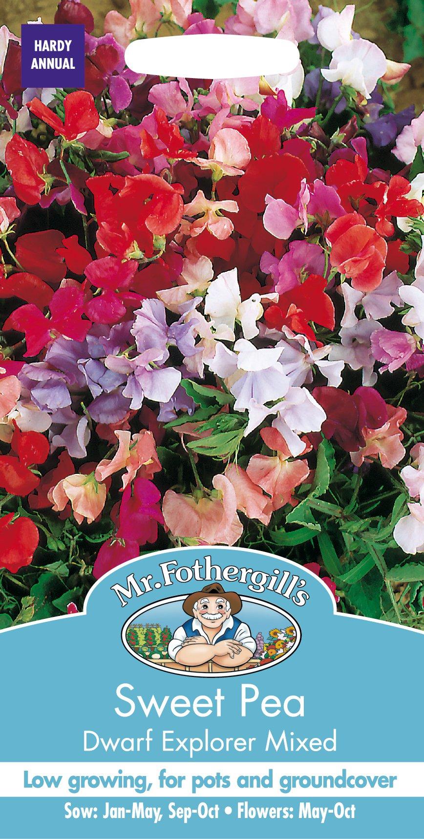Mr Fothergill's 22991 Flower Seeds, Sweet Pea Dwarf Explorer Mixed