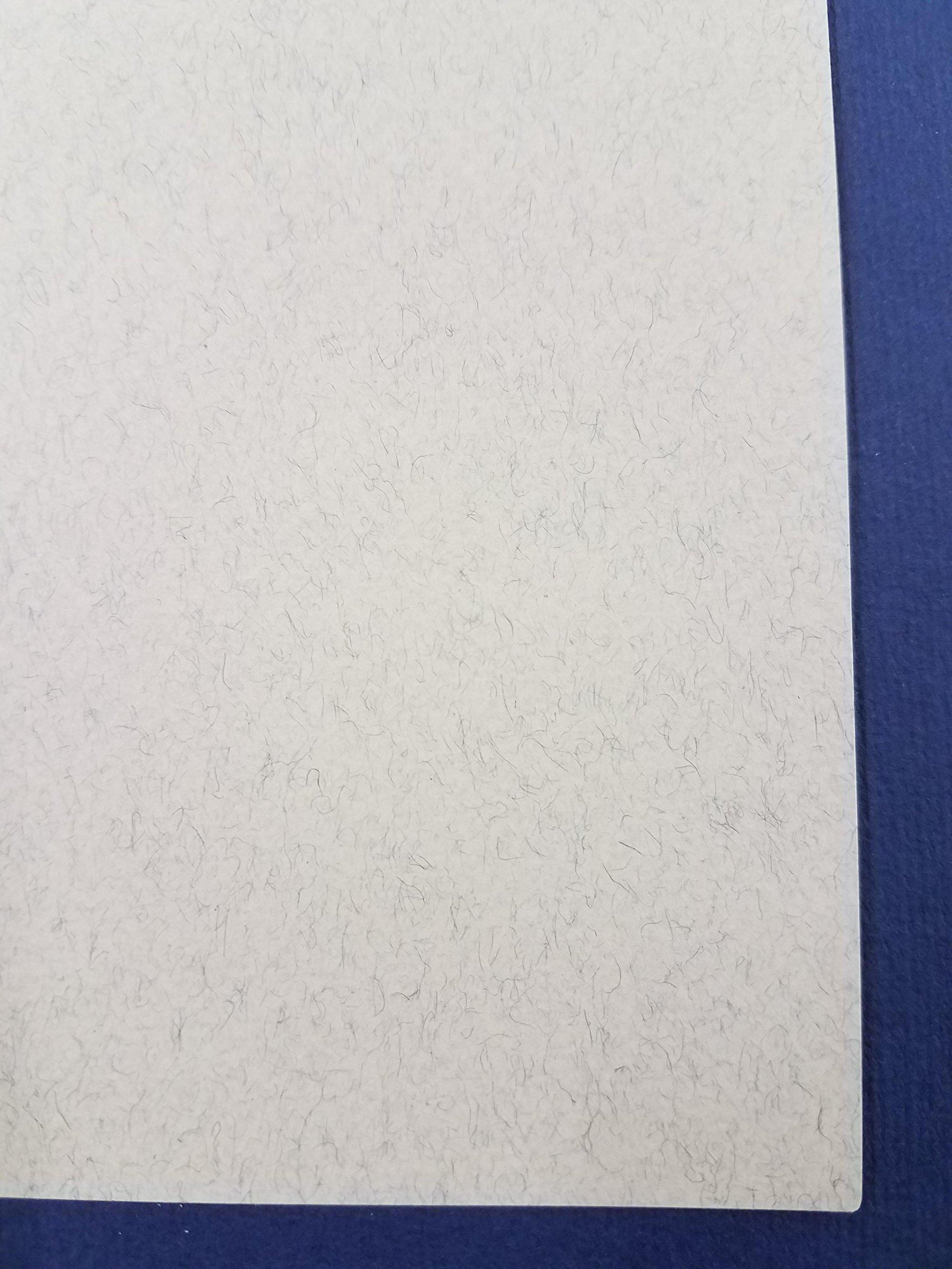 Fabriano Tiziano, Felt Gray, 20'' x 26'' 160gsm/75lb (10 Sheet Pack) by Tiziano