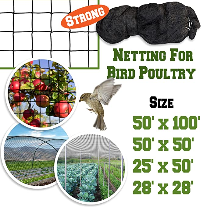 Amazon.com: benefitusa Stronger Pájaros Árbol Frutal Net ...