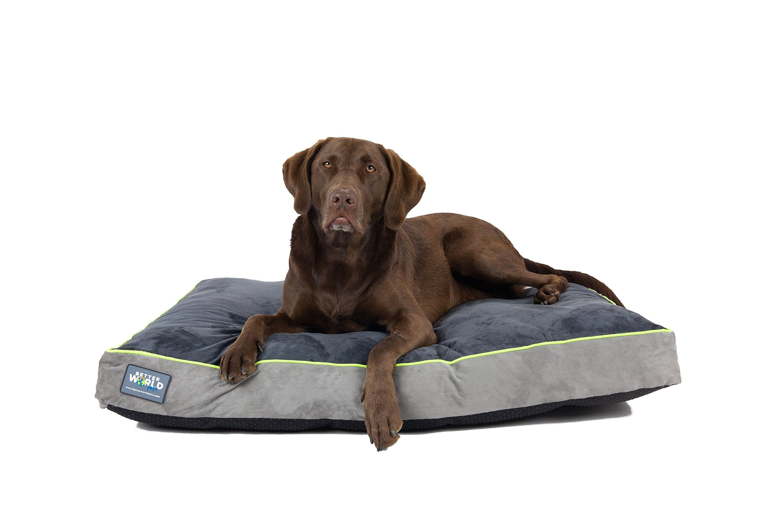 Better World Pets 5-Inch Thick Waterproof Orthopedic Memory Foam Dog Bed with 180 GSM Removable Washable Cover (Large, Grey with Rave Green trim)