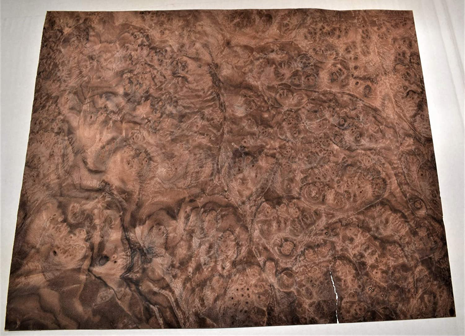 Walnut Raw Wood Veneer Sheets 7.5 x 41 inches 1//42nd Thick