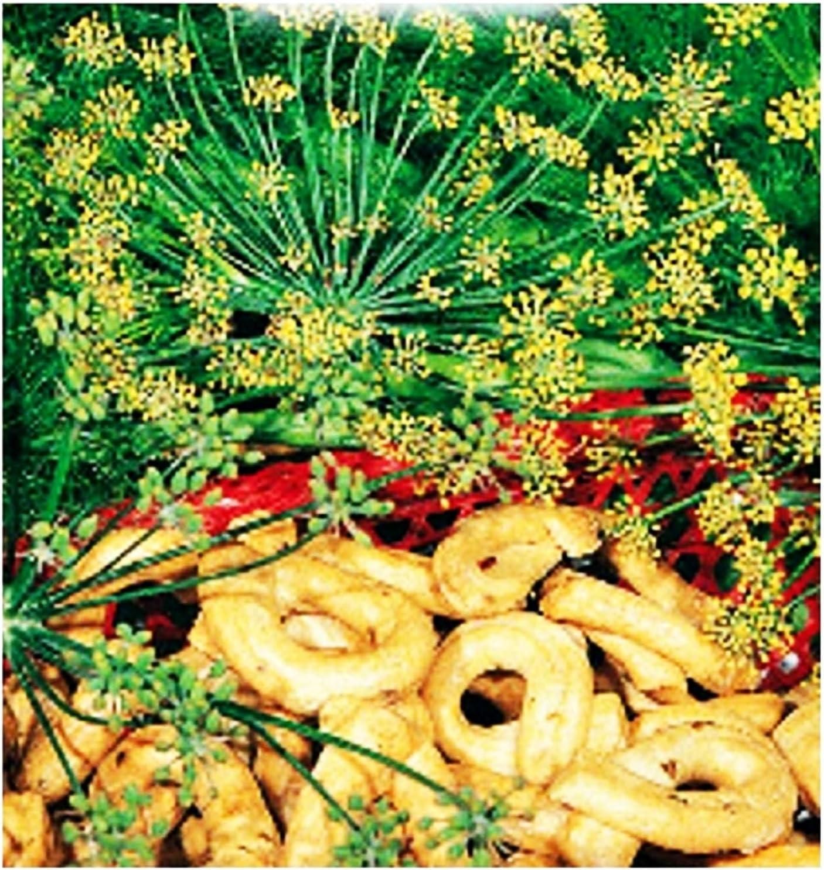 Semillas de hinojo silvestre - vegetales - foeniculum vulgare capillaceum - aprox. 120 semillas - las mejores semillas de plantas - flores - frutas raras - hinojo silvestre -