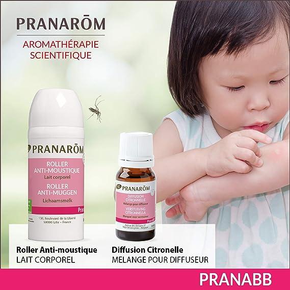 Pranarôm pranabb Diffusion citronela Bio Eco: Amazon.es: Salud y ...