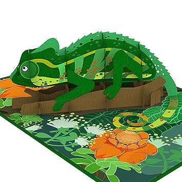 Amazon.com: Colorpop Tarjeta 3D de camaleón desplegable ...