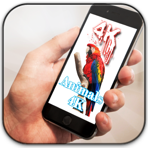 Animals 4K wallpapers 2020: Amazon.es: Appstore para Android