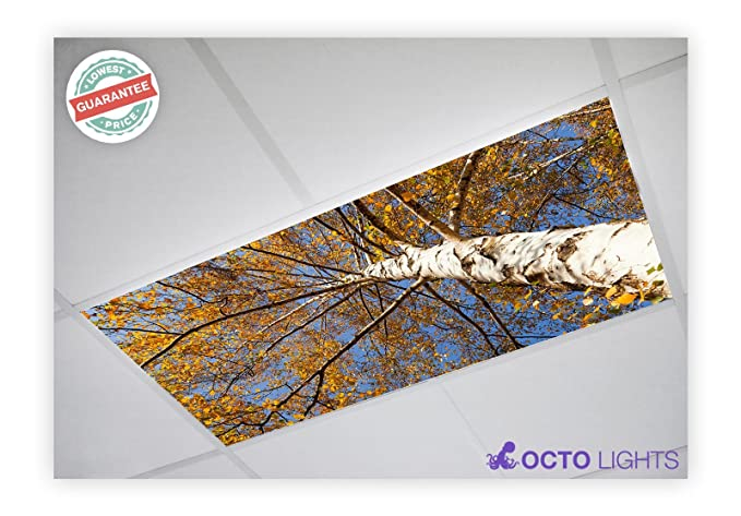 Fluorescent Light Covers >> Tree 003 2x4 Flexible Fluorescent Light Cover