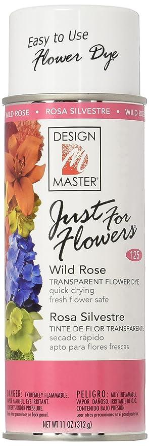 Amazoncom Design Master Just For Flowers Spray Dye Dark Pink 4 Piece