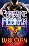 Dark Storm (Carpathian Novel, A)