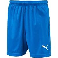 Puma Children's Liga Shorts Core Trousers