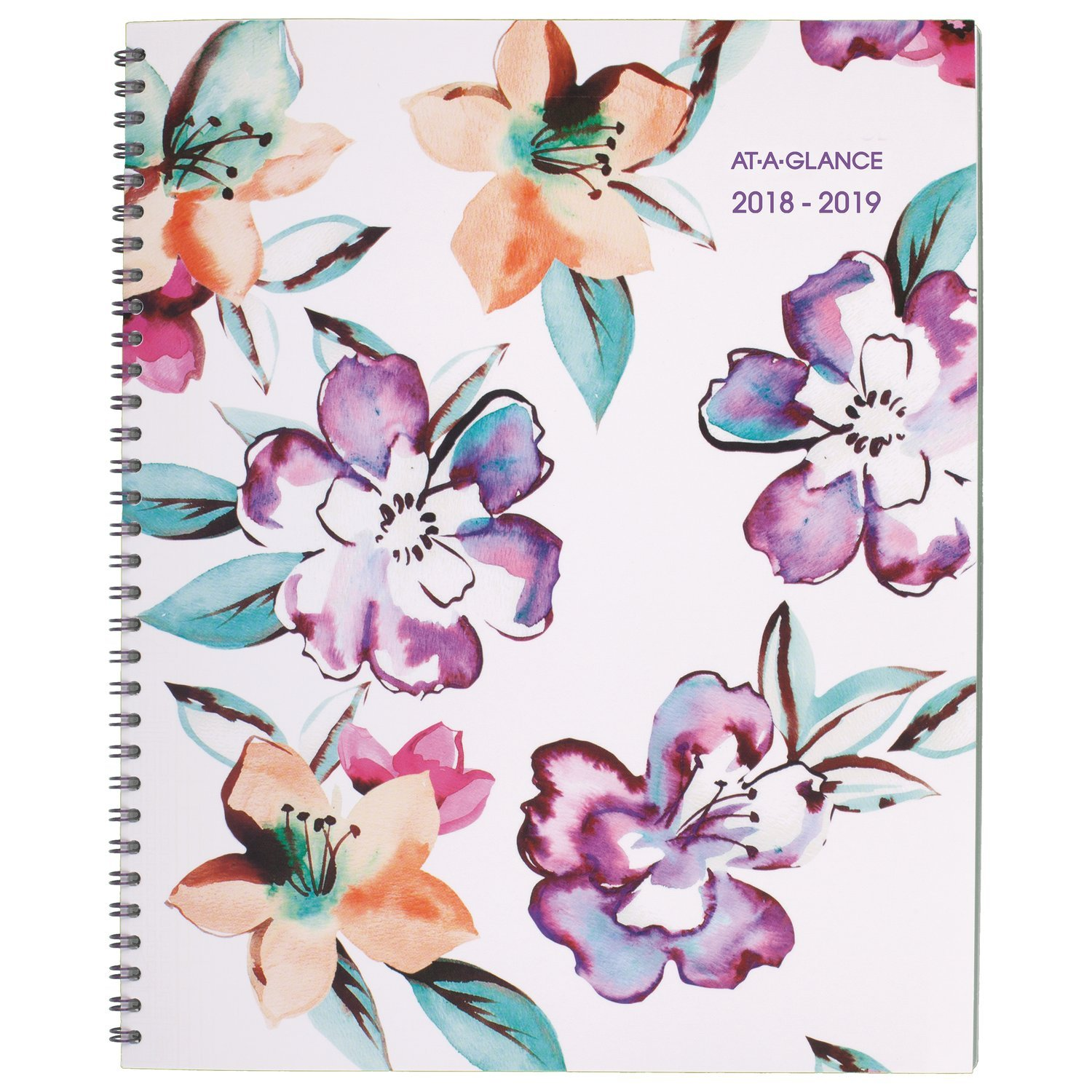 AT-A-GLANCE 2018-2019 Academic Year Weekly & Monthly Planner, Large, 8-1/2 x 11, June Style (1012-905A) ACCO Brands 1012-905A-19